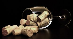 vin primeur